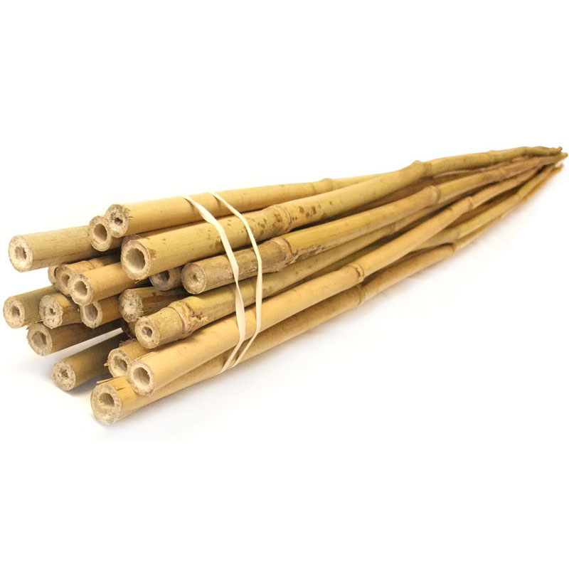 Plant supports bamboo garden sticks