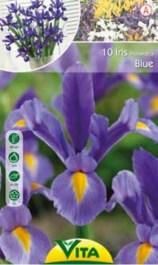 056-iris