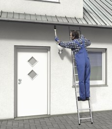 singe-ladder-21
