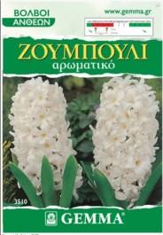 zoumpouli-aspro